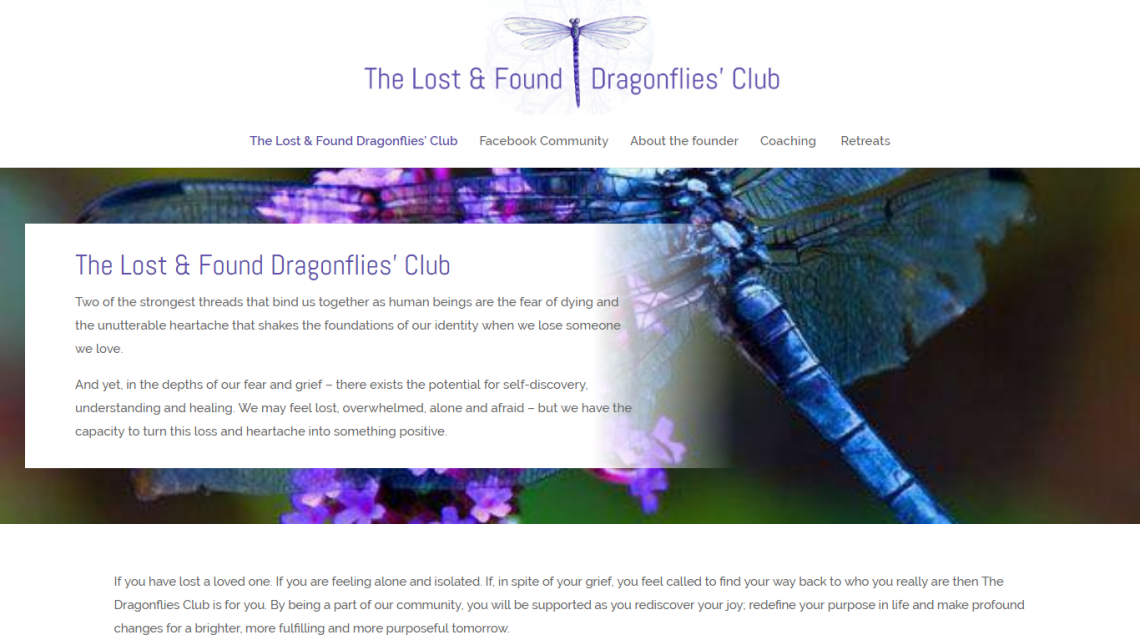 The lost and found dragonflies club